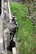 "Old farmer walking along the famous ""acequias"" (Moorish drainage channels), Bubion, Alpujarra, Andalucia, Southern Spain. Photograph by Manuel Cohen."