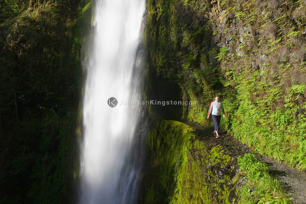A young woman walks carefully along the narrow Cliffside trail of Tunnel Falls on Eagle Creek trail in the Columbia River Gorge, Oregon, USA. Tunnel Falls received its name due to a tunnel being cut from the bedrock behind the falls so that hikers and trail runners can pass further up the gorge.  The trail becomes very narrow during this section and it is necessary to hold onto a safety cable. (Model Released)