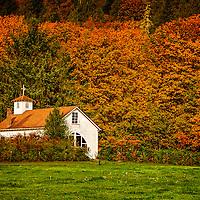 Fall Along The Skagit