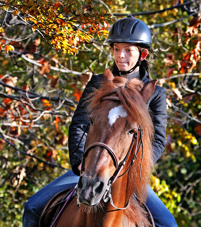 """I think the horse is called """"Dave"""". This is last of a five part mini-series on a warm late fall day in 2006."""