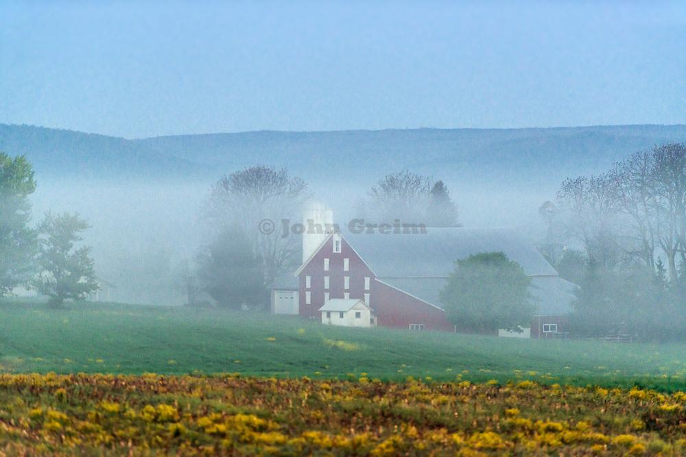 Farm is mist, Adams County, Pennsylvania, USA