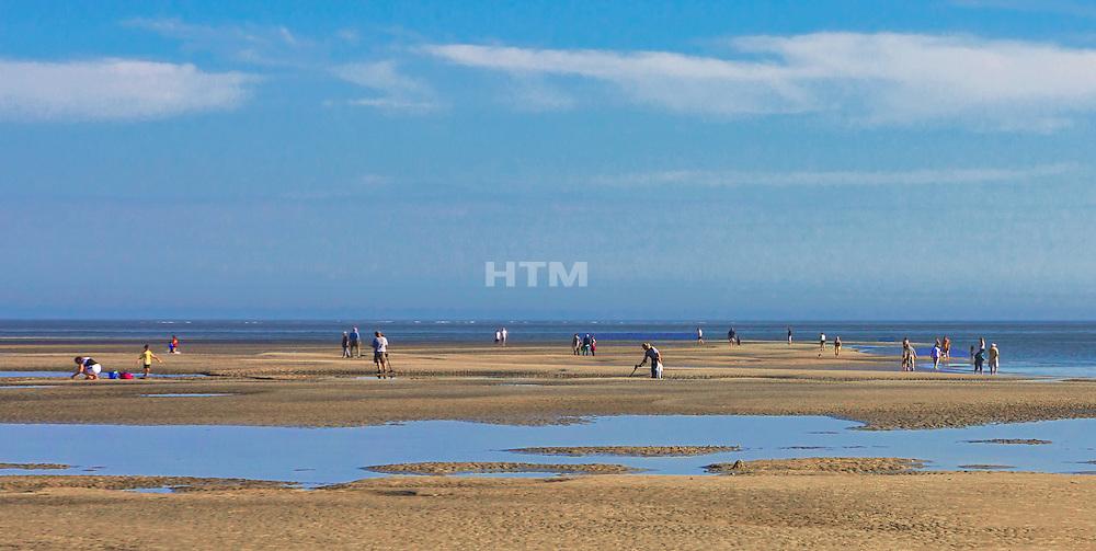 Treasure Hunters And Dog Walkers At Low Tide On East Beach Sandbar