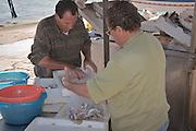 Fishermen selling fish near Mondello harbor.<br /> Pescatori vendono il pesce vicino il porticciolo di Mondello