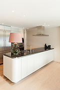 Interior, beautiful modern apartment, elegant living with kitchen