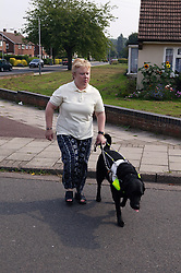 Partially sighted woman crossing road with her guide dog,