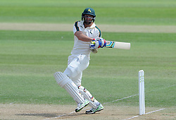 Nottinghamshire's Ben Hilfenhaus pulls the ball. - Photo mandatory by-line: Harry Trump/JMP - Mobile: 07966 386802 - 15/06/15 - SPORT - CRICKET - LVCC County Championship - Division One - Day Two - Somerset v Nottinghamshire - The County Ground, Taunton, England.