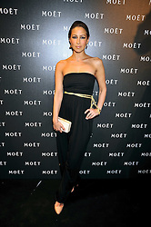 RACHEL STEVENS at the Moet & Chandon Tribute to Cinema party held at the Big Sky Studios, Brewery Road, London N7 on 24th March 2009.