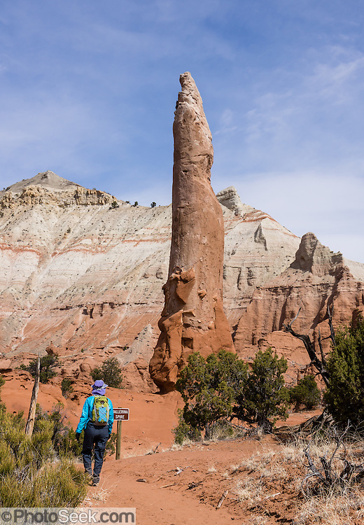 Ballerina Spire, Kodachrome Basin State Park, Utah, USA. Geologists believe that ancient hot springs and geysers in the park area filled with sediment and solidified. Through time, the Entrada sandstone surrounding the solidified geysers eroded, leaving large sand pipes. 67 sand pipes rise in the park from 2 to 52 meters high. You can drive to the park from the north via a paved road from Cannonville and from the south via Cottonwood Canyon, Road 400, a dirt road from the Page, Arizona area, passable for most vehicles in dry conditions.