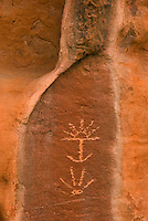 Petroglyphs on sandstone panel along the Esacalante River, Grand Staircase Escalante National Monument Utah