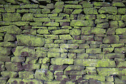 Traditional English stone wall covered in green moss on the boundary wall of Lyme Park National Trust house and grounds in Cheshire, England, United Kingdom.  (photo by Andrew Aitchison / In pictures via Getty Images)
