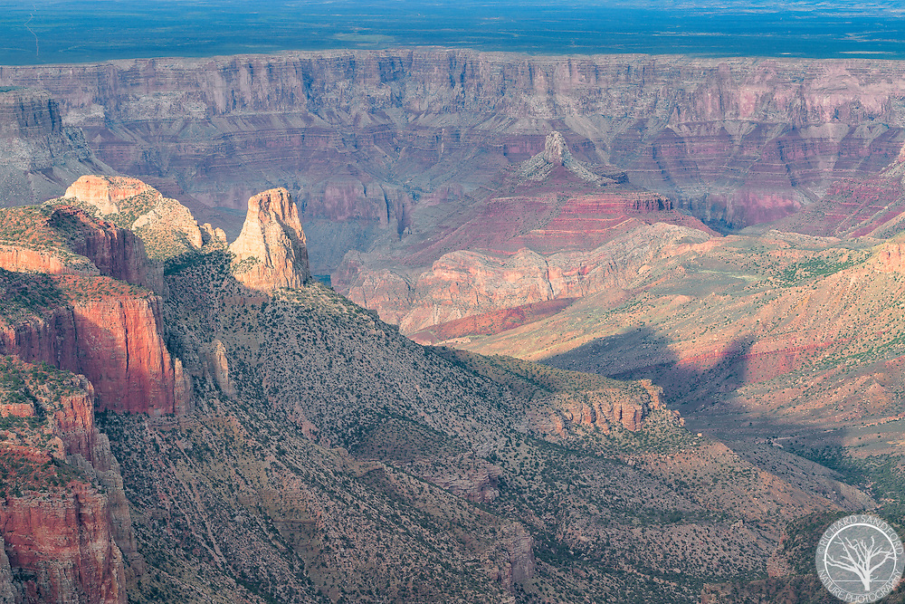 The setting sun casts long shadows in the valley near Cape Royal Overlooks. North Rim of the Grand Canyon National Park, Arizona.