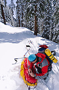 Backcountry skier waxing a sled, Ansel Adams Wilderness, Sierra Nevada Mountains, California USA