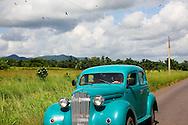 Vultures and car near Artemisa, Cuba.
