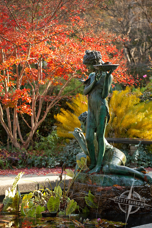 """The Conservatory Garden in Central Park, NYC. Fall colors. The English Garden's Burnett Fountain depicting Dickon and Mary from the book """"The Secret Garden"""""""