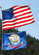 "The national flag of the United States and the state flag of Idaho fly from a mast. The Seal of the Territory of Idaho was adopted in 1863 and redrawn several times before statehood in 1890. The state Great Seal was designed by Emma Edwards Green, the only woman to design a state seal. The outer ring says ""Great Seal of the State of Idaho,"" with the star signifying a new light in the galaxy of states. The inner ring contains a banner with the Latin motto, Esto perpetua (""Let it be perpetual"" or ""It is forever""). A woman signifies justice, and a man dressed as a miner commemorates the chief industry in the 1890s. A shield shows a pine tree (timber interests), the Snake or Shoshone River, and a man plowing a field. A sheaf of grain and cornucopias (horns of plenty) portray bountiful agriculture.  An elk's head rises above the shield. The state flower (the wild Syringa or Mock Orange) and ripened wheat grow next to the woman."