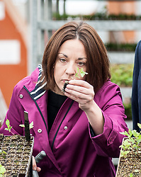 Scottish Labour leader Kezia Dugdale visits Alba Trees in Gladsmuir, East Lothian as part of the General Election campaign.<br /> <br /> &copy; Dave Johnston/ EEm