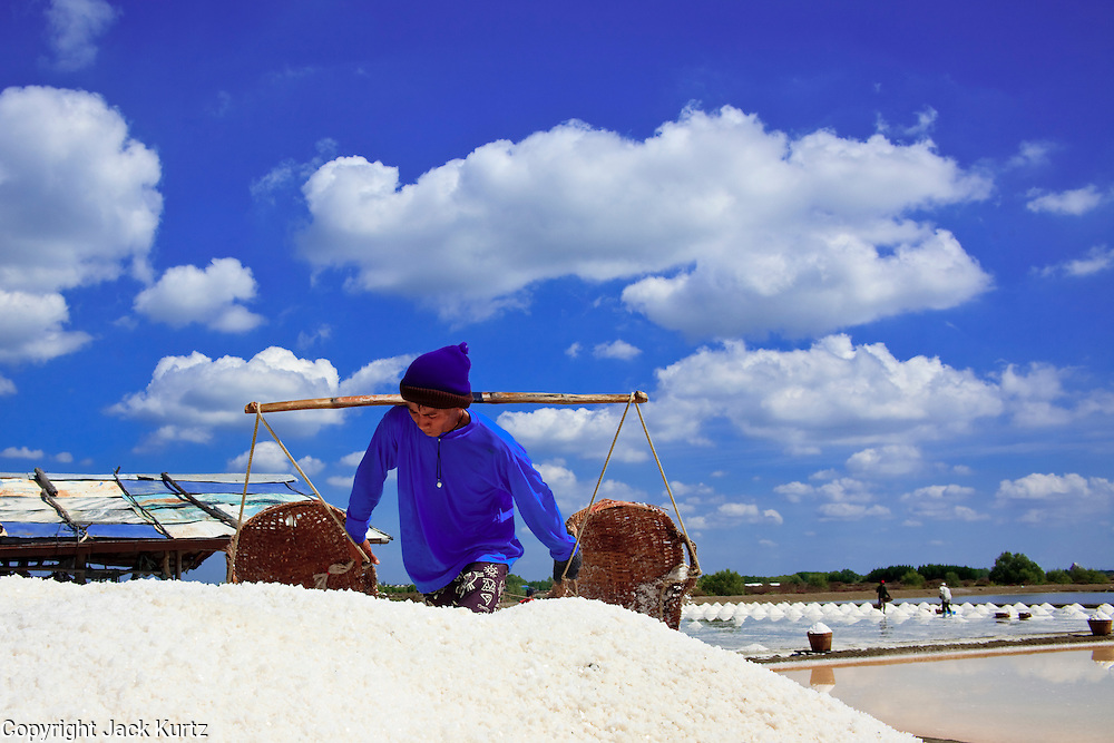 Mar 23, 2009 -- SAMUT SONGKHRAM, THAILAND: Workers harvest salt near Samut Songkhram, Thailand. The salt farms between Samut Sakhon and Sumat Songkhram are Thailand's largest salt producing region. Salt is typically harvested for about six months of the year. The fields are prepared for salt farming as soon as the rainy season ends. First the fields are tamped down so they hold water, then they are flooded with salt water from either the Gulf of Siam or the Mae Khlong River (both are salty). After about two months, the first harvest is ready. The fields are drained and the salt picked up from the fields. Then the fields are flooded again and the process repeated. As the season goes on and the fields become saltier, the amount of time they are flooded is reduced till the end of the season when they may only be flooded for two or three days. Most of the workers in the salt fields are migrant workers from Isaan, an impoverished region in the northeast of Thailand. Once the rainy season starts and it's no longer possible to harvest salt the workers go home to work their small farms. The workers are paid based on the amount of salt their crew harvests. Each basket they carry weighs between 30 and 50 kilograms (66 and 110 pounds).    Photo by Jack Kurtz