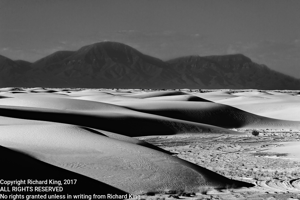 Images of the White Sands, New Mexico
