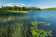 Grayling Lake <br /> Whiteshell Provincial Park<br /> Manitoba<br /> Canada