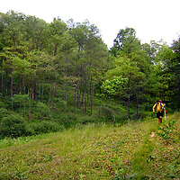 STS Hike
