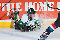 KELOWNA, CANADA - NOVEMBER 12: Austin Glover #15 of the Prince Albert Raiders slides into the boards against the Kelowna Rocketson November 12, 2016 at Prospera Place in Kelowna, British Columbia, Canada.  (Photo by Marissa Baecker/Shoot the Breeze)  *** Local Caption ***