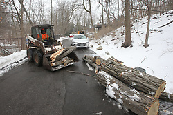 April 17, 2018 - Toronto, ON, Canada - TORONTO, ON - APRIL 17:  -  A large tree fell onto a historic property in Wychwood Park. Al Miley, certified arborist and his team remove the damaged limb from the tree and clean up the area. Vince Talotta/Toronto Star (Credit Image: © Vince Talotta/The Toronto Star via ZUMA Wire)
