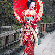 Geisha are traditional Japanese female entertainers who act as hostesses and whose skills include performing various Japanese arts such as classical music, dance, games and conversation. They rarely stop and are known to dislike photographs being taken of them by tourists so I was very lucky to be allowed to take this shot.