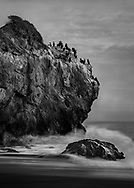 The tide started to rise and the wave crashed the rocks at the beach. The cormorants can't be bothered by that. Like me, they were just soaking up that last few minutes of the beautiful light.