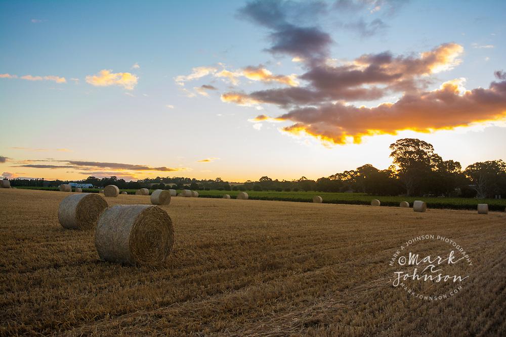 Hay Bales, Barossa Valley, South Australia