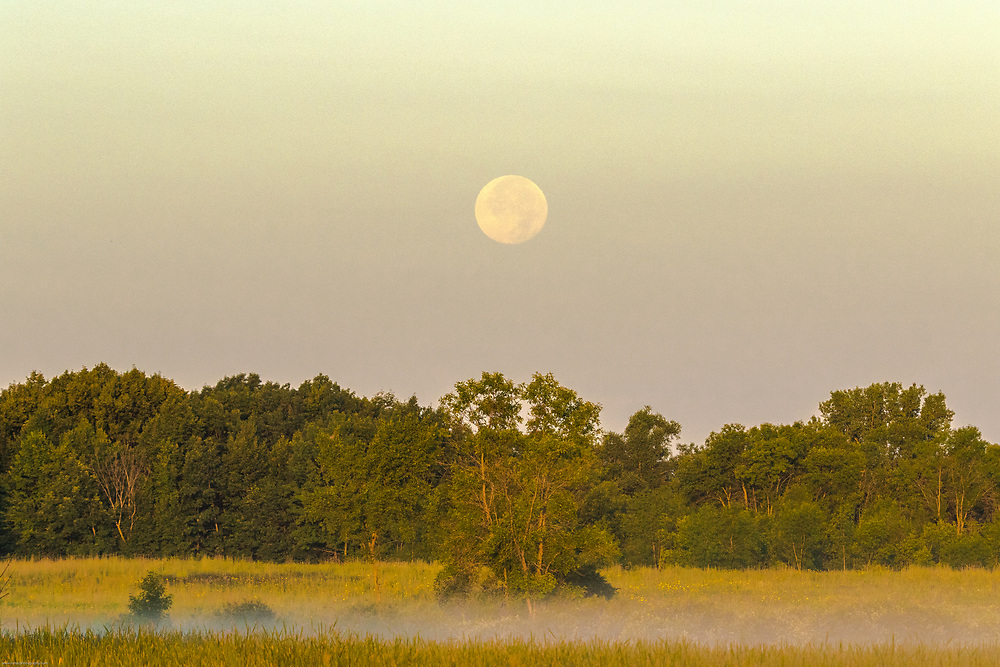 Full moon at sunrise on Horicon Marsh