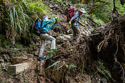 We work around a short damaged section of the Routeburn Track in Fiordland National Park, near Te Anau, Southland region, South Island of New Zealand. In 1990, UNESCO honored Te Wahipounamu - South West New Zealand as a World Heritage Area.