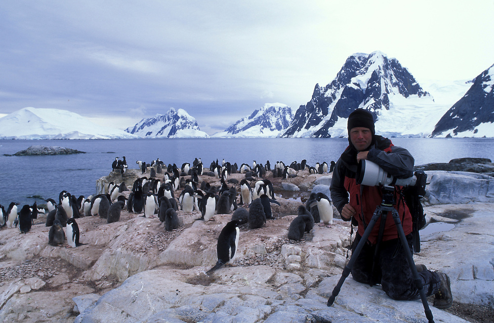 Antarctica, (MR) Photographer Paul Souders photographs penguin rookery on Petermann Island