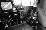 Jovem mãe na favela Dona Marta, Rio de Janeiro. - Rosemary Rodrigues Viana, de 17 anos de idade com seus filhos: Tainá Rodrigues de Sousa e Alex Rodrigues de Sousa..Jovem mãe na favela Dona Marta, Rio de Janeiro. - Alecrim o Rodrigues Viana, de 17 anos de idade com seus filhos: Tainá Rodrigues de Sousa o e Alex Rodrigues de Sousa.