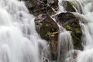 Portion of the main falls at Englishman River Falls Provincial Park in Errington, British Columbia, Canada