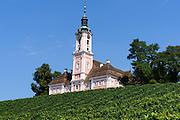 Kloster Birnau, Klosterkirche, Weinberg, Bodensee, Baden-Württemberg, Deutschland