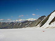 A small plane lands on a glacier and mushers depart