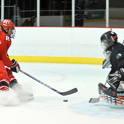 College Ice Hockey - Rutgers vs. Binghamton
