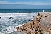 Seascape of the Atlantic Ocean at Sao Pedro de Moel, Portugal