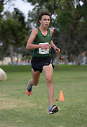 Nov 1, 2017; Long Beach, CA, USA Will Frankenfield of Long Beach  Poly wins the boys race in 14:55 during the Moore League cross country finals at Heartwell Park.