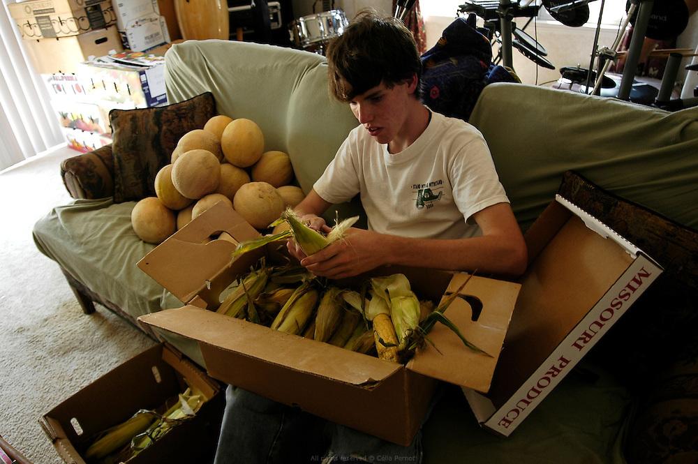 DANJO Farms, Jesse pr&eacute;pare les cartons de ma&iuml;s &agrave; vendre dans le salon, la pi&egrave;ce la plus fra&icirc;che de la maison en &eacute;t&eacute;.<br /> <br /> DANJO Farms, Jesse preparing boxes of corn in the living room because it's the coolest place of the house in summer.