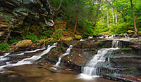 Unnamed Cascade at the Ricketts Glen State Park, Pennsylvania. This area was once home to Paleo-Indian Nomadic hunters, some 10,000 years ago and it seems there were proposals recognize Ricketts glen as a National Park. It is an extremely rewarding 3 mile hike.