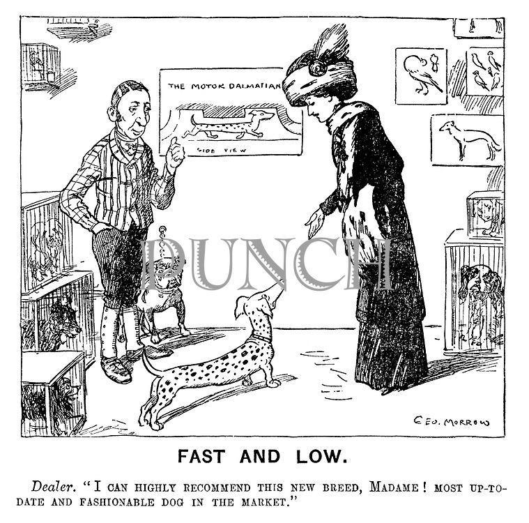 "Fast and Low. Dealer. ""I can highly recommend this new breed, Madame! Most up-to-date and fashionable dog in the market."""