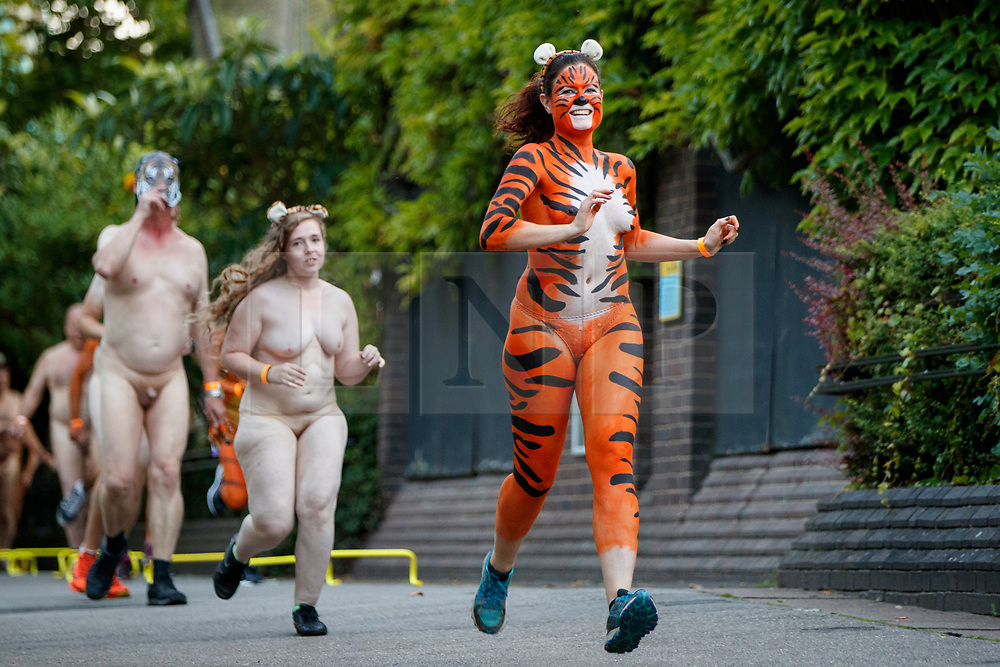 © Licensed to London News Pictures. 10/08/2017. London, UK. Naked runners take part in the Streak for Tigers event at ZSL London Zoo on 10 August 2017 to help raising money for the Zoological Society of London's (ZSL) conservation work with the striped mammals. Photo credit: Tolga Akmen/LNP