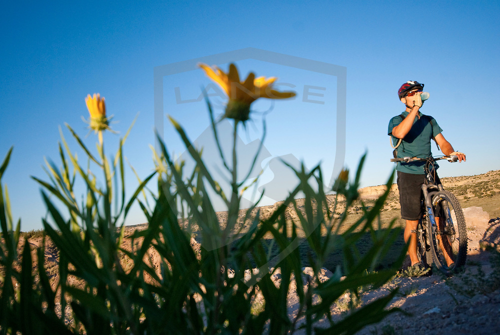 mountain biker cliff youngberg takes a drink and hydrates with yellow wildflower blooms while riding at the white mesa bike trails of new mexico