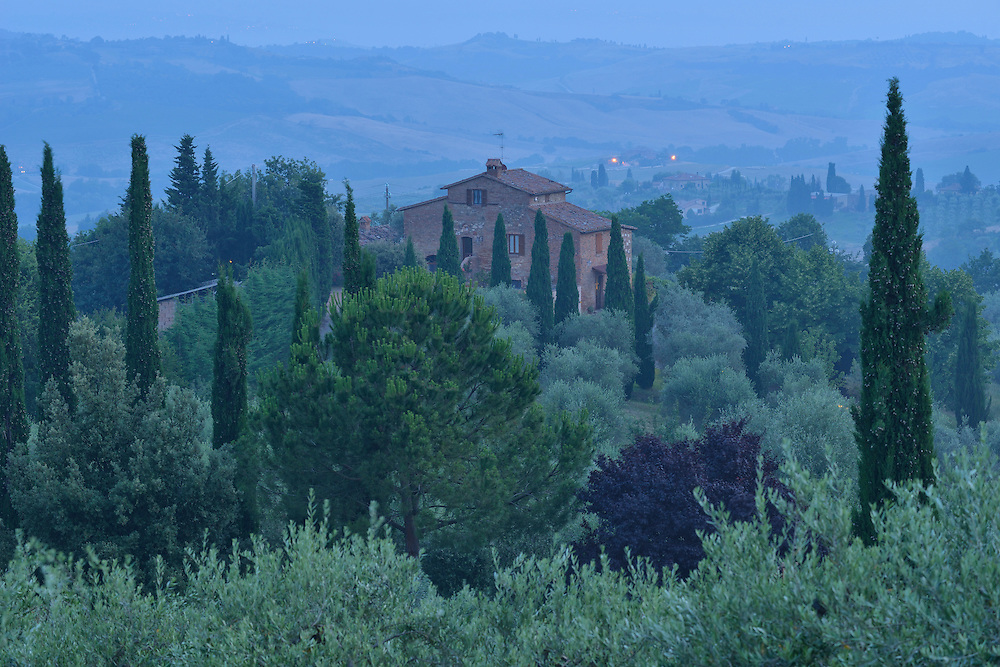 House and trees on a hillside on a misty morning, Tuscany, Siena Province, Italy, Europe