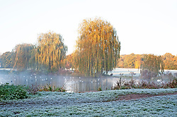 ©Licensed to London News Pictures 08/11/2019.<br /> Sidcup,UK. A cold and frosty autumnal weather morning at Footscray Meadows in Sidcup, South East London. Photo credit: Grant Falvey/LNP