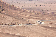 Stony desert landscapes with road and acacia trees, M'hamid, Sahara desert, Morocco.