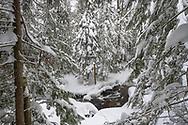 A winter scene near Munising, Michigan