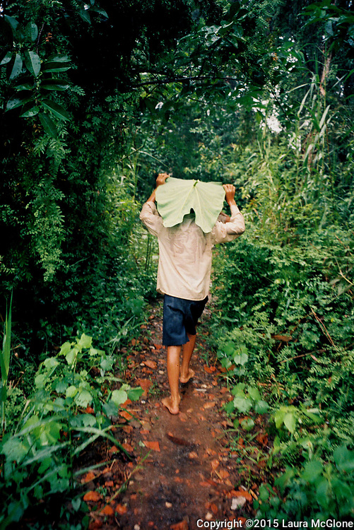 A boy walking on a path in the jungle, Mekong Delta, Vietnam