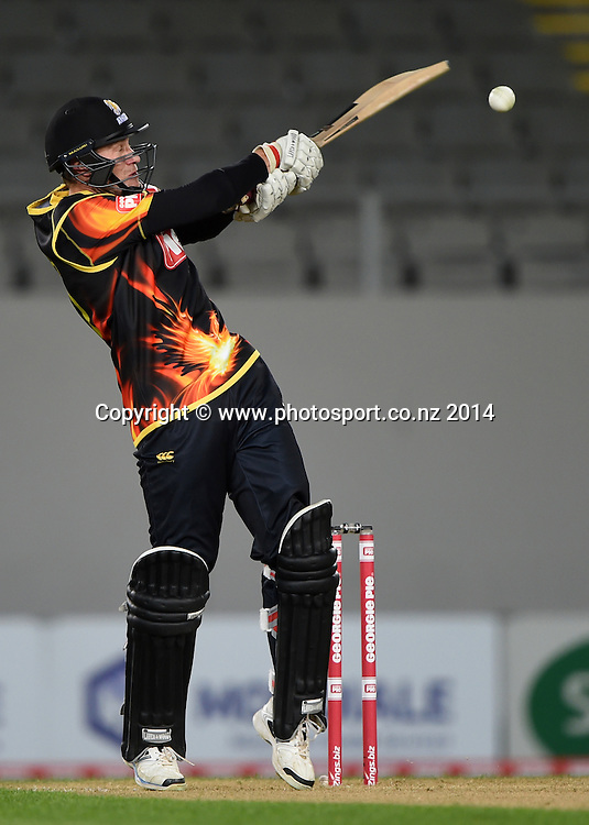 Wellington's Stephen Murdoch batting during the Georgie Pie Super Smash Twenty20 cricket match between the Auckland Aces and Wellington Firebirds at Eden Park, Auckland on Friday 14 November 2014. Photo: Andrew Cornaga / www.Photosport.co.nz